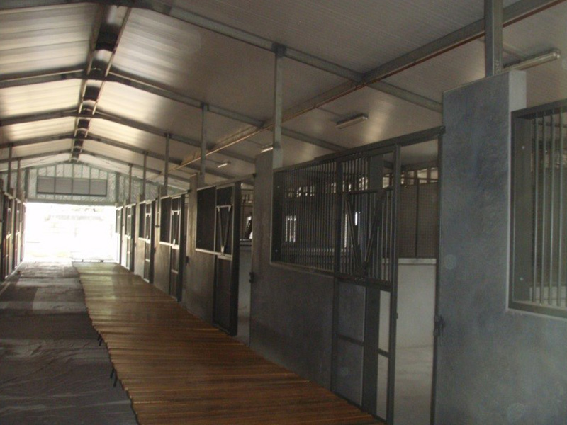Patinack Farm Equine Training Facilities